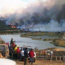 El último incendio afectó 17 mil hectáreas de bosque en Torres del Paine.