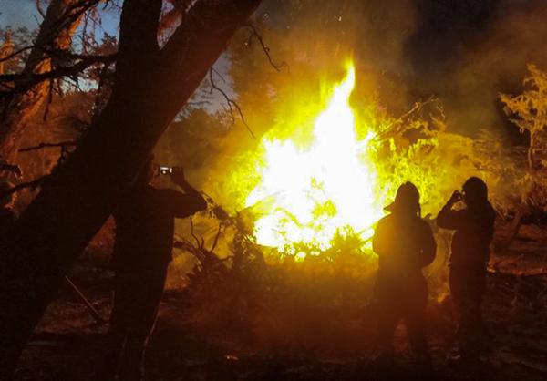 Foto: Brigada de Incendios Forestales