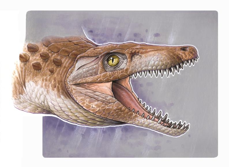 """Hallaron un cocodrilo """"enano"""" de 148 millones de años"""